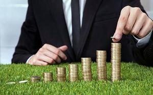 Оценка стоимости земельного участка: основные методы