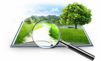 Кадастровая оценка земель: государственная процедура, осуществляется на основе Федерального закона; какие есть методические указания, технические рекомендации, а также каково нормативное обеспечение оценки по кадастровому номеру?