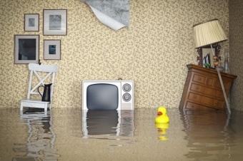 Страховка квартиры от затопления соседей и от потопа: как застраховать жилье от залива и сколько это стоит, какова цена, а также, что будет, если залита застрахованная недвижимость