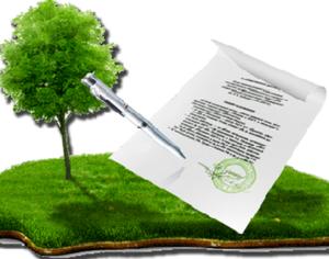 «Дачная амнистия»: необходимые документы и порядок оформления участка земли