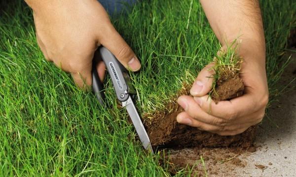 Отчуждение земельного участка: условия и порядок действий