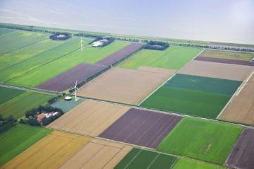 Право безвозмездного пользования земельным участком: условия заключения договора